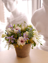ミモザと春の花々